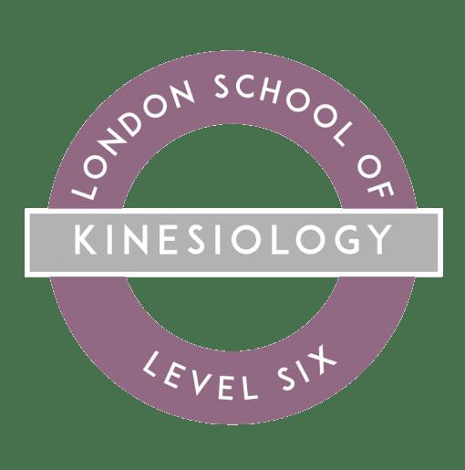 Kinesiology Training in London Level 6 logo